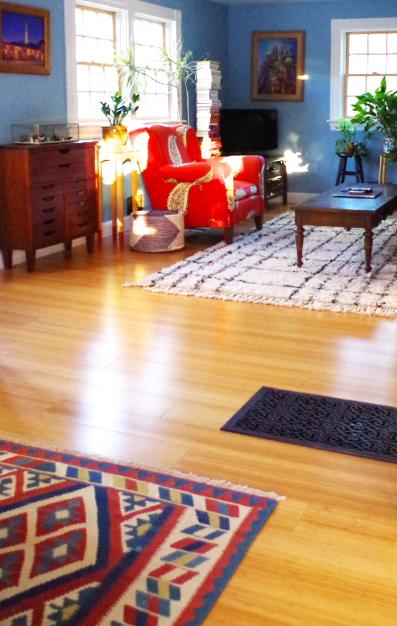 What are the pros and cons of bamboo flooring?